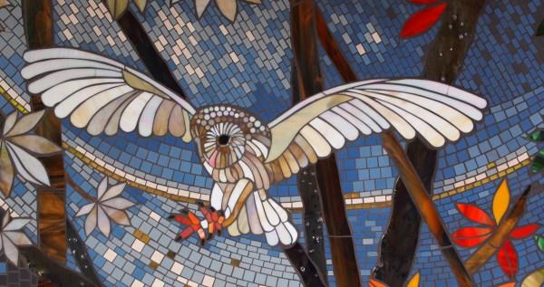 Gyosei barn owl detail final web snap